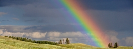 blessings of rainbows