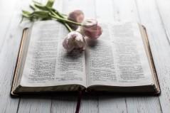 Gods redemptive power